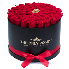 Load image into Gallery viewer, Red & Gold Preserved Roses | Large Round Black Huggy Rose Box - The Only Roses
