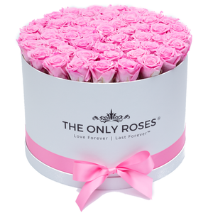 Pink Preserved Roses | Large Round White Huggy Rose Box - The Only Roses