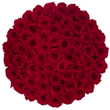 Load image into Gallery viewer, Red Preserved Roses | Large Round White Huggy Rose Box - The Only Roses