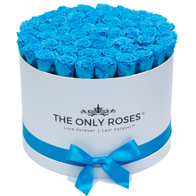 Load image into Gallery viewer, Blue Preserved Roses | Large Round White Huggy Rose Box - The Only Roses