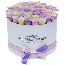 Load image into Gallery viewer, Candy Color Preserved Roses | Large Round White Huggy Rose Box - The Only Roses