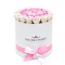 Load image into Gallery viewer, Special Pink & White Preserved Roses | Medium Round White Huggy Rose Box - The Only Roses