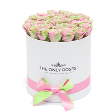 Load image into Gallery viewer, Pink &  Green Mix Preserved Roses | Medium Round White Huggy Rose Box - The Only Roses