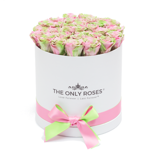 Pink &  Green Mix Preserved Roses | Medium Round White Huggy Rose Box - The Only Roses