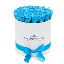 Load image into Gallery viewer, Blue Preserved Roses | Medium Round White Huggy Rose Box - The Only Roses