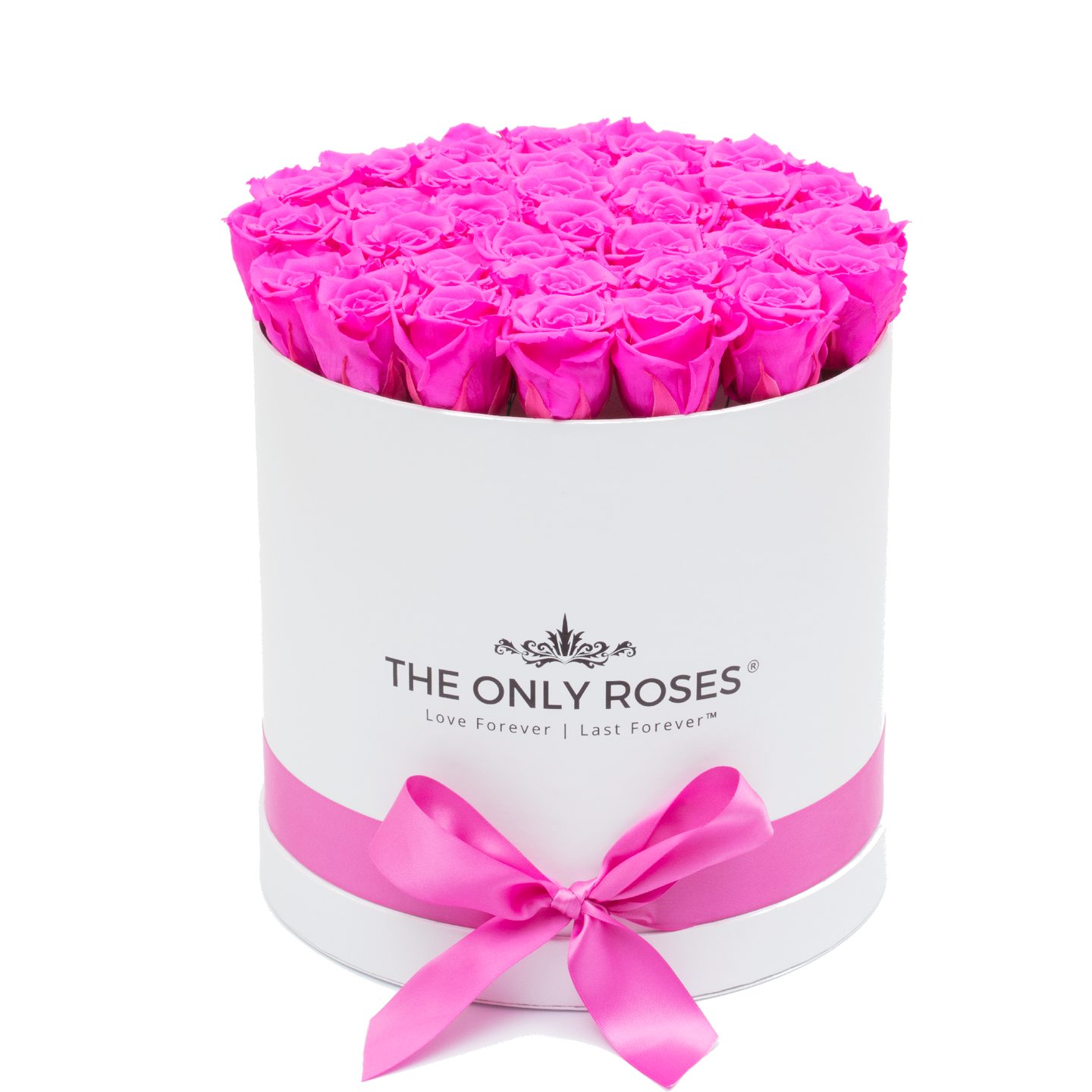 Hot Pink Preserved Roses | Medium Round White Huggy Rose Box - The Only Roses