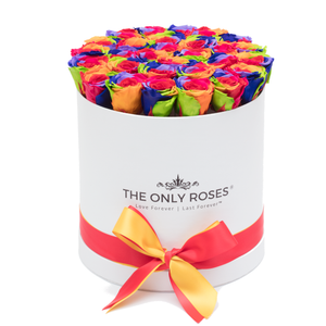 Rainbow Preserved Roses | Medium Round White Huggy Rose Box - The Only Roses