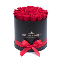 Load image into Gallery viewer, Red Preserved Roses | Medium Round Black Huggy Rose Box - The Only Roses