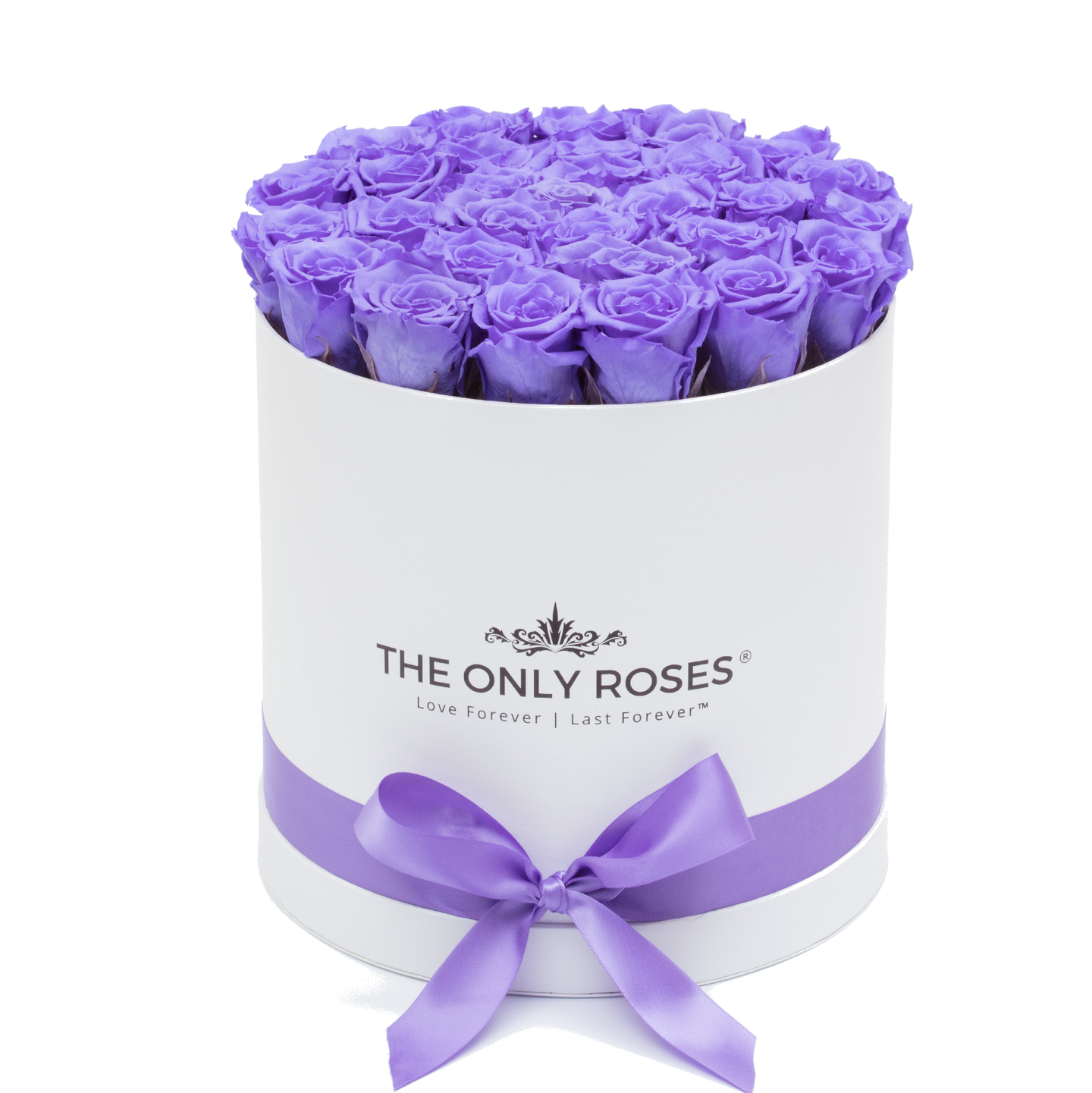 Purple Preserved Roses | Medium Round White Huggy Rose Box - The Only Roses