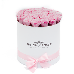 Baby Pink Preserved Roses | Medium Round White Huggy Rose Box - The Only Roses