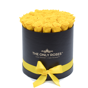 Yellow Preserved Roses | Medium Round Black Huggy Rose Box - The Only Roses