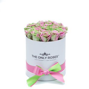Green & Pink Mix Preserved Roses | Small Round White Huggy Rose Box - The Only Roses