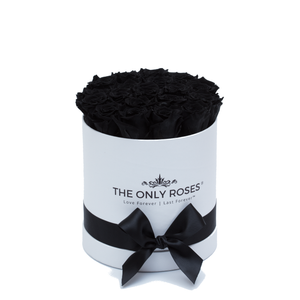 Black Preserved Roses | Small Round White Huggy Rose Box - The Only Roses