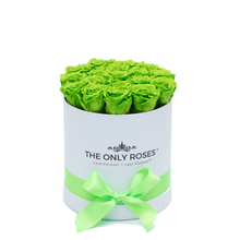 Load image into Gallery viewer, Green Preserved Roses | Small Round White Huggy Rose Box - The Only Roses