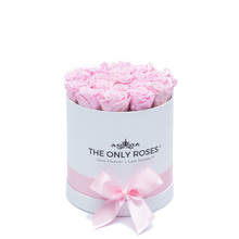 Load image into Gallery viewer, Light Pink Preserved Roses | Small Round White Huggy Rose Box - The Only Roses
