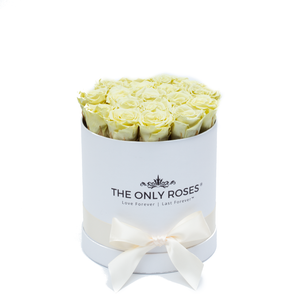 Light Yellow Preserved Roses | Small Round White Huggy Rose Box - The Only Roses