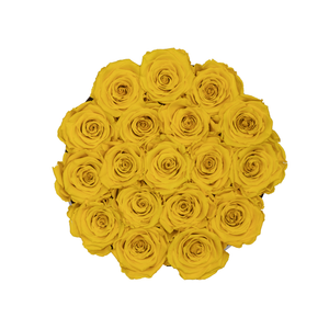 Yellow Preserved Roses | Small Round White Huggy Rose Box - The Only Roses