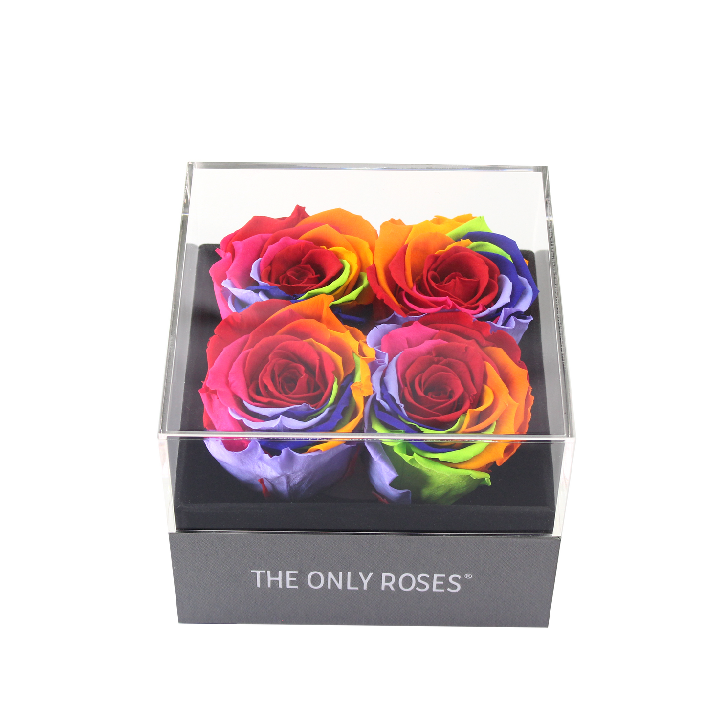 Rainbow Preserved Roses | Small Square Classic Grey Box - The Only Roses