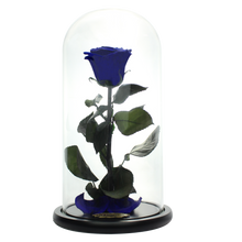 Load image into Gallery viewer, Royal Blue Preserved Rose | Beauty and The Beast Glass Dome