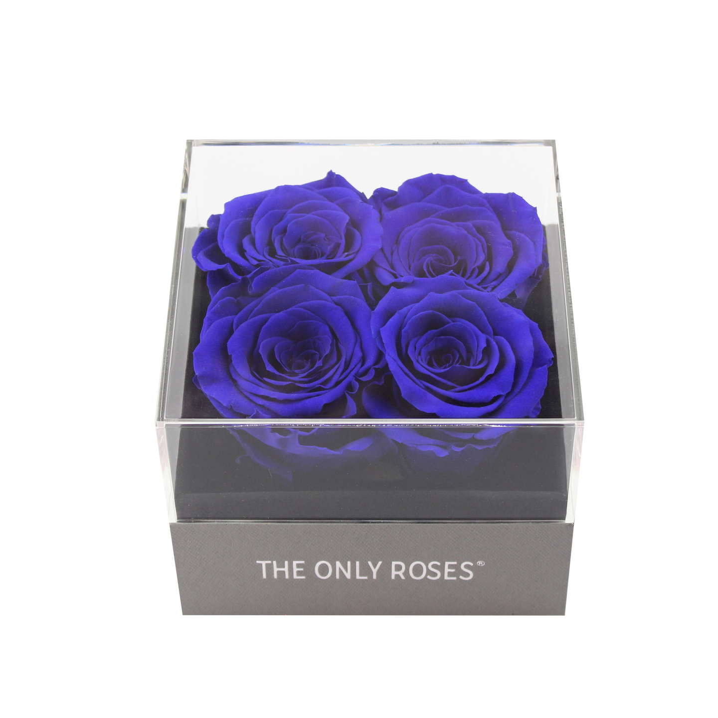 Royal Blue Preserved Roses | Small Square Classic Grey Box - The Only Roses