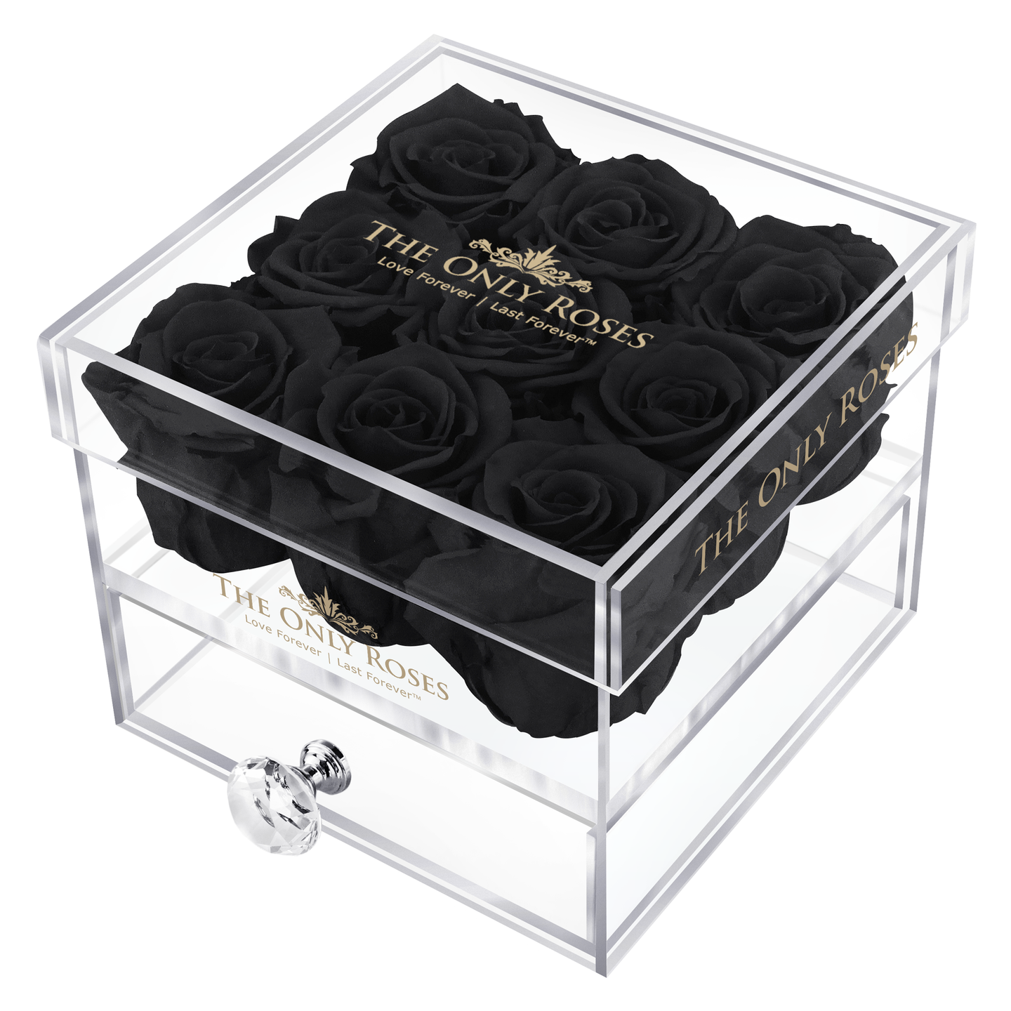 Black Preserved Roses | Small Acrylic Rose Box
