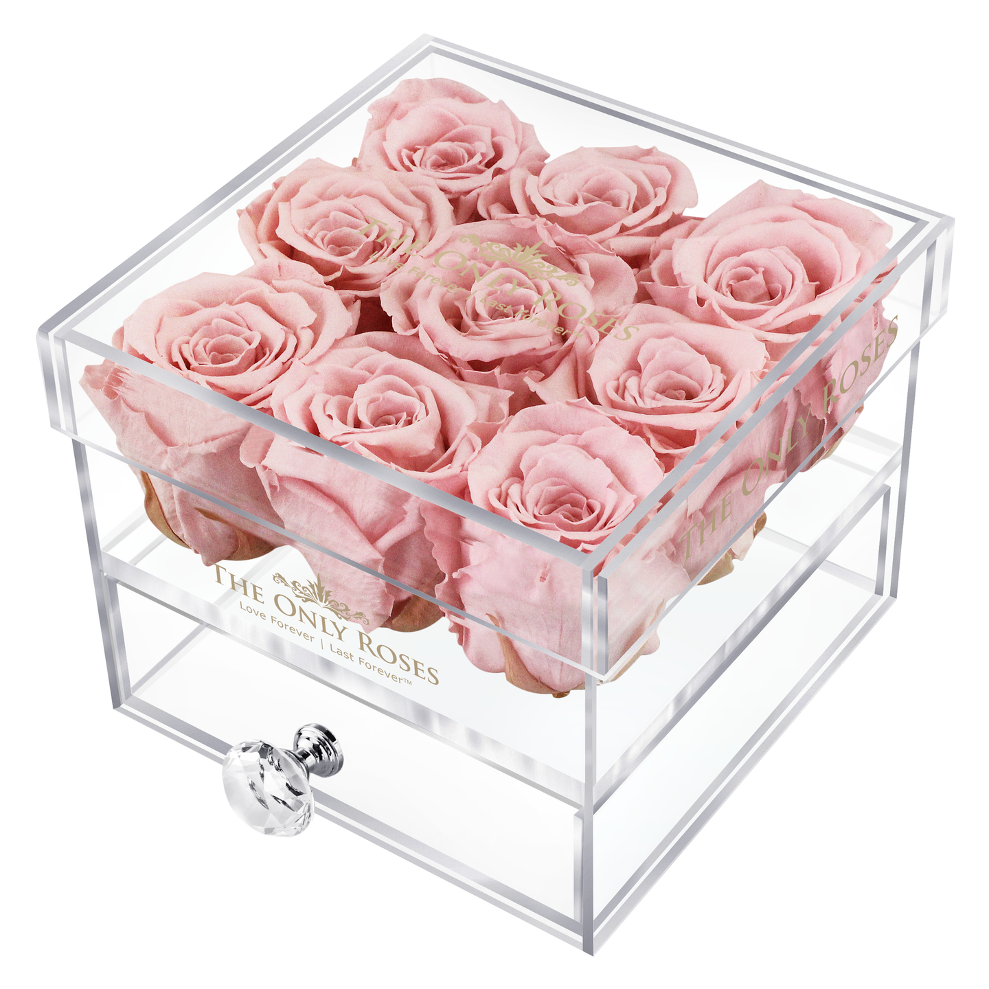 Light Pink Color Preserved Roses | Small Acrylic Rose Box