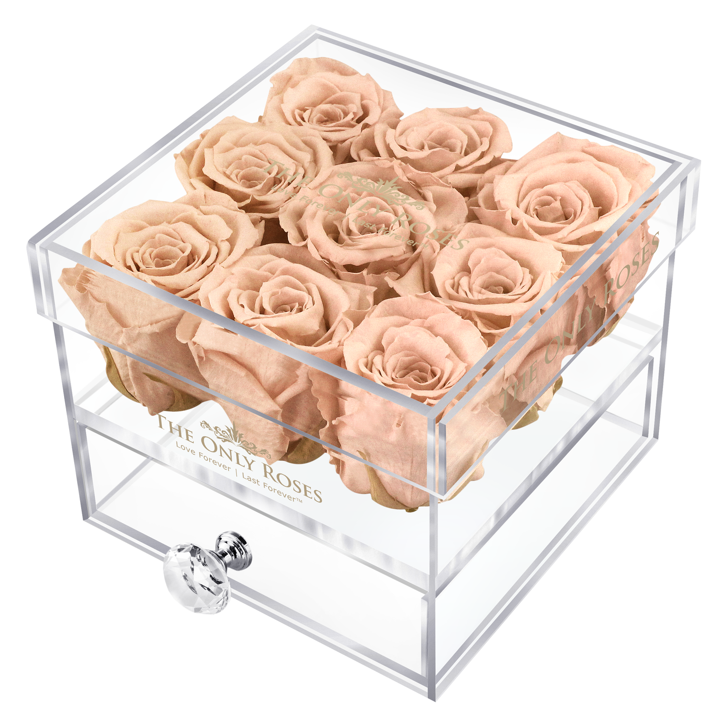Peach Color Preserved Roses | Small Acrylic Rose Box