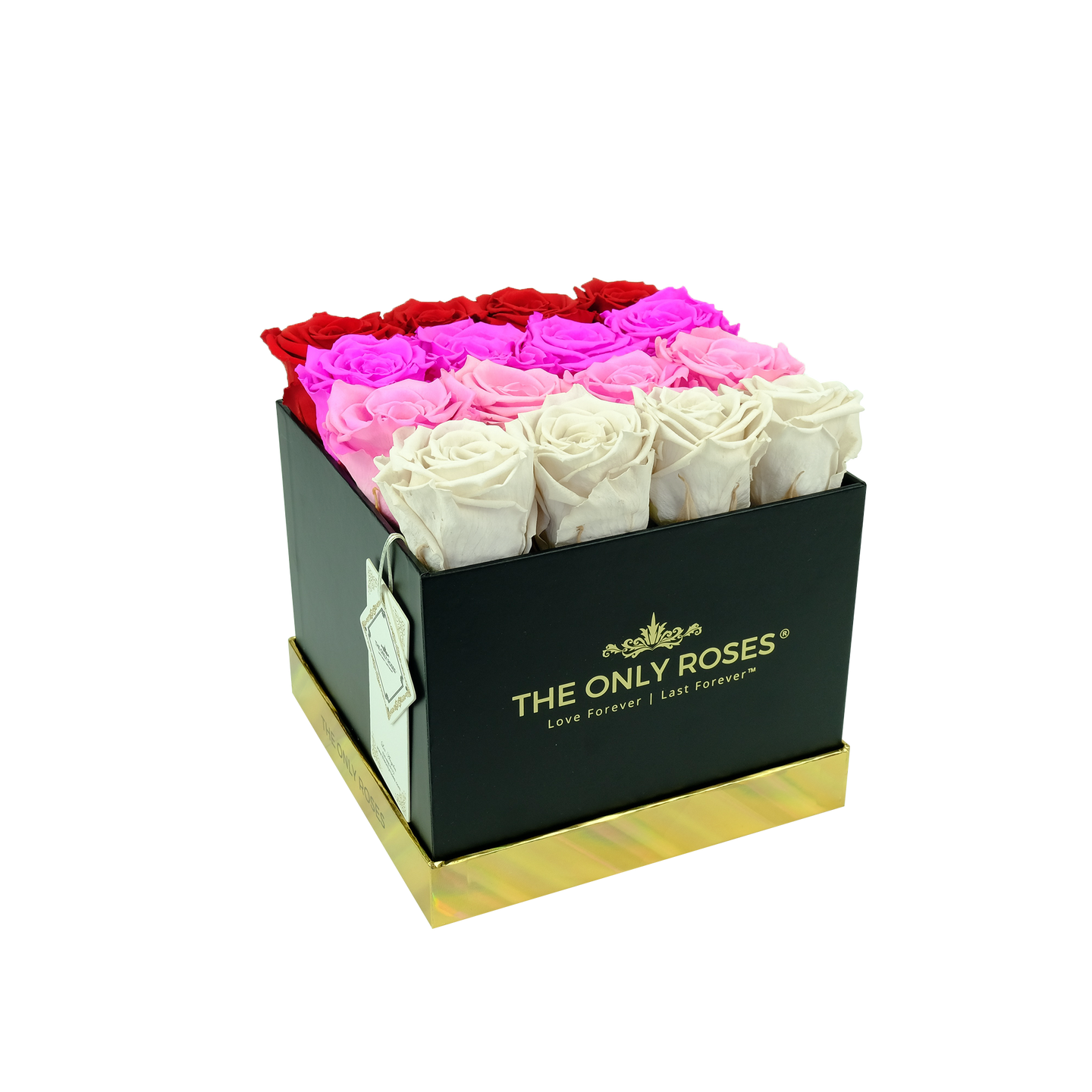 Fading Color Preserved Roses | Square Black Huggy Rose Box - The Only Roses