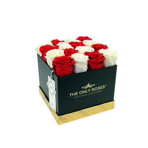 Red and White Preserved Roses | Square Black Huggy Rose Box - The Only Roses