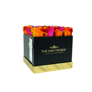 Rainbow Preserved Roses | Square Black Huggy Rose Box - The Only Roses