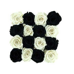 Black and White Preserved Roses | Square Black Huggy Rose Box - The Only Roses