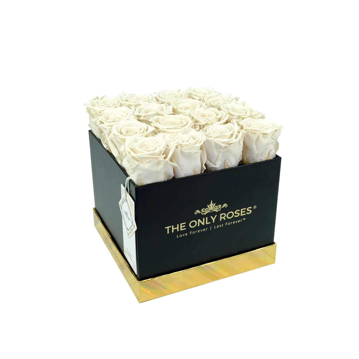 White Preserved Roses | Square Black Huggy Rose Box - The Only Roses