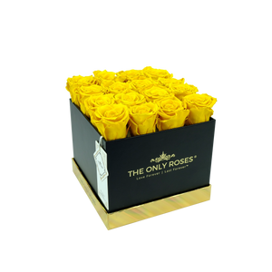 Yellow Preserved Roses | Square Black Huggy Rose Box