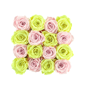 Light Pink and Light Yellow Preserved Roses | Square White Huggy Rose Box - The Only Roses