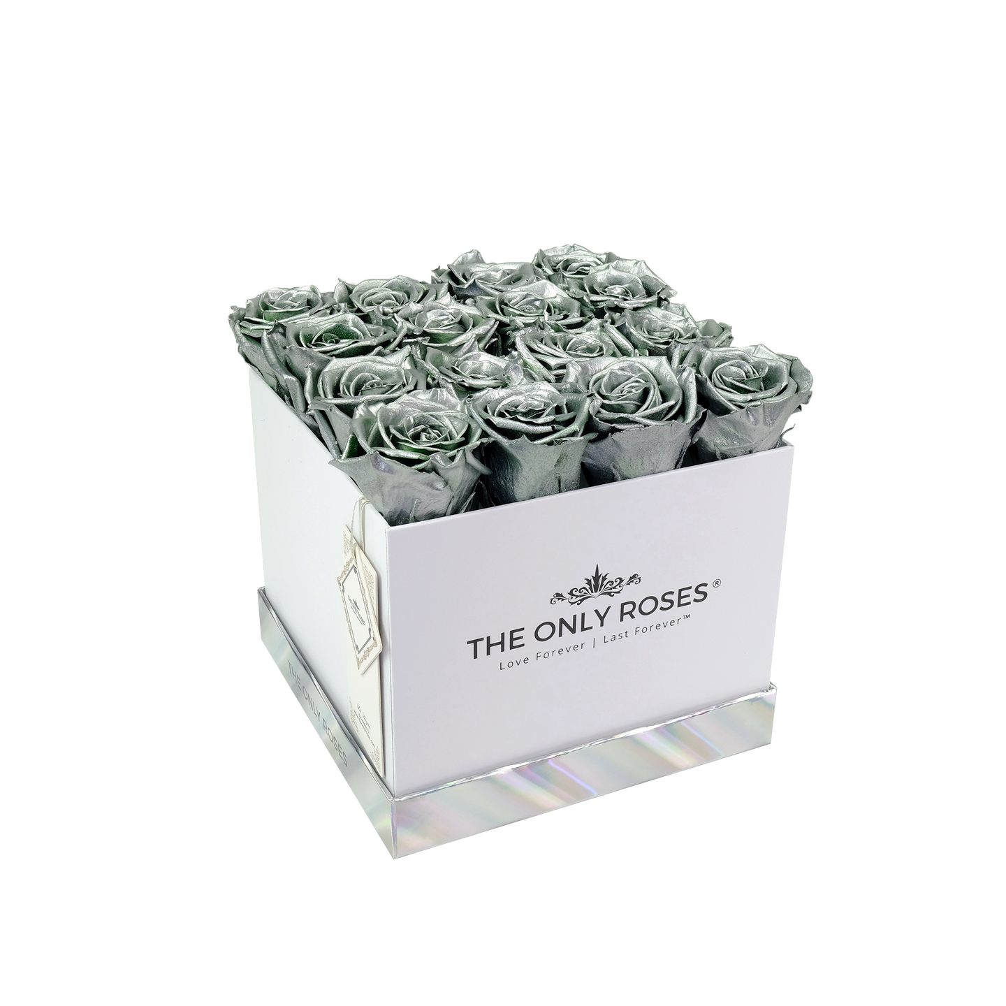Silver Preserved Roses | Square White Huggy Rose Box - The Only Roses