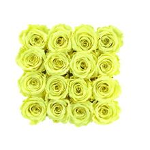 Load image into Gallery viewer, Light Yellow Preserved Roses | Square White Huggy Rose Box - The Only Roses