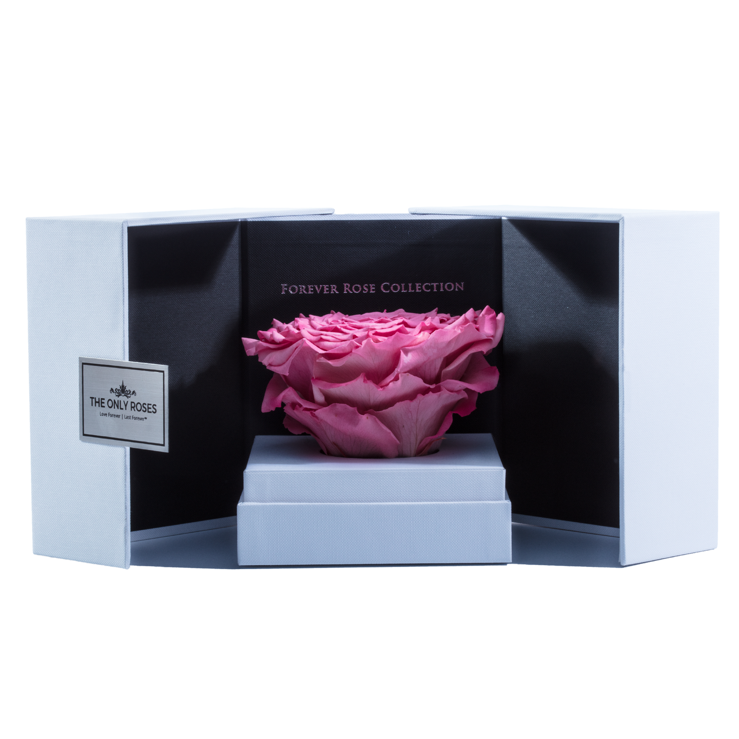 Pink Mega Preserved Rose | Swing Opening Box - The Only Roses