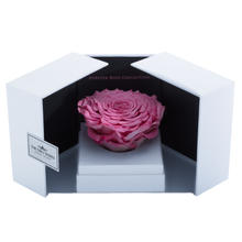 Load image into Gallery viewer, Pink Mega Preserved Rose | Swing Opening Box - The Only Roses