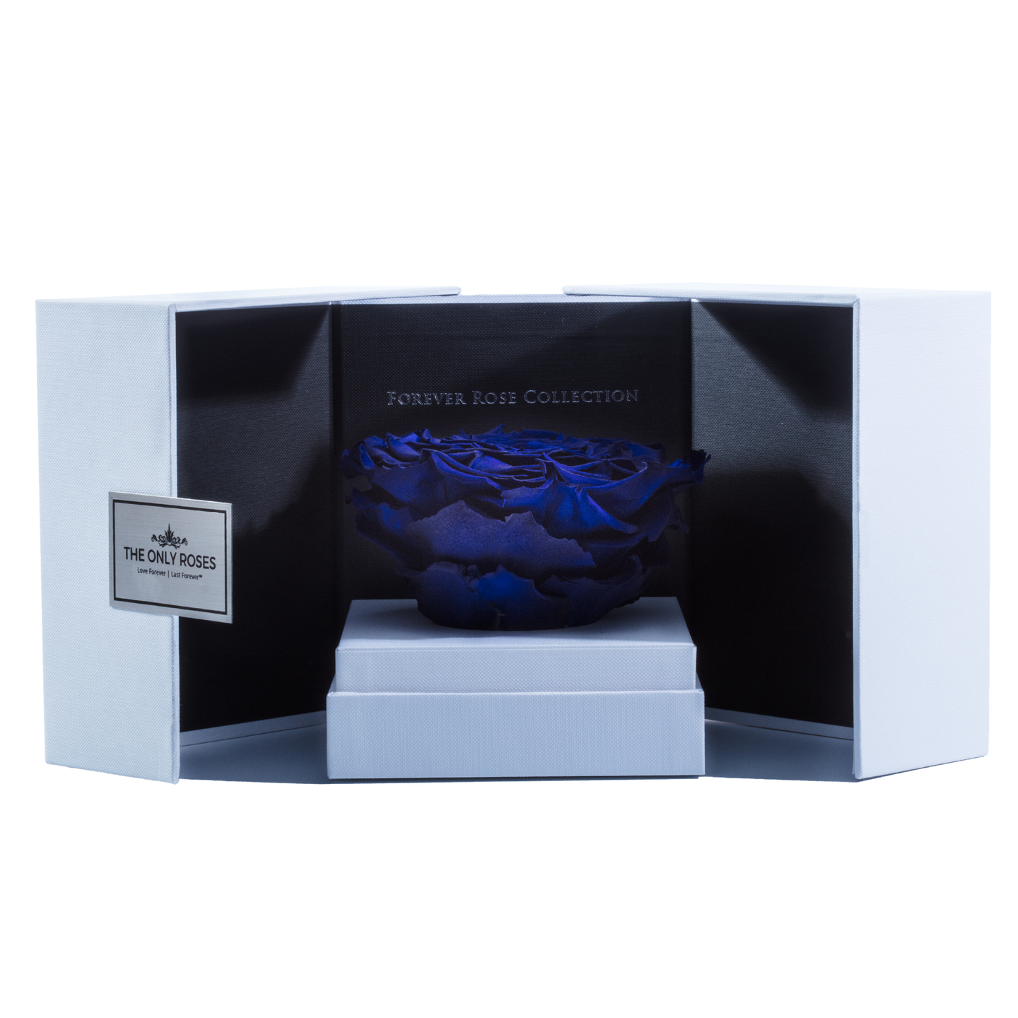 Royal Blue Mega Preserved Rose | Swing Opening Box - The Only Roses
