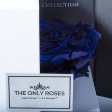 Load image into Gallery viewer, Royal Blue Mega Preserved Rose | Swing Opening Box - The Only Roses