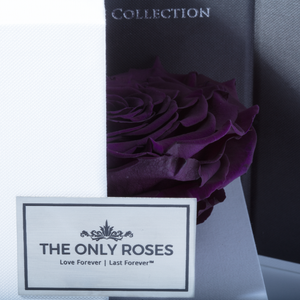 Dark Purple Mega Preserved Rose | Swing Opening Box - The Only Roses