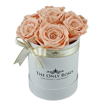 Load image into Gallery viewer, Peach Color Preserved Roses | Small White Round Rose Hat Box