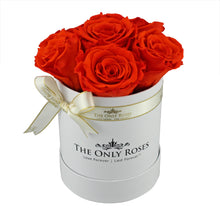 Load image into Gallery viewer, Bright Orange Preserved Roses | Small White Round Rose Hat Box
