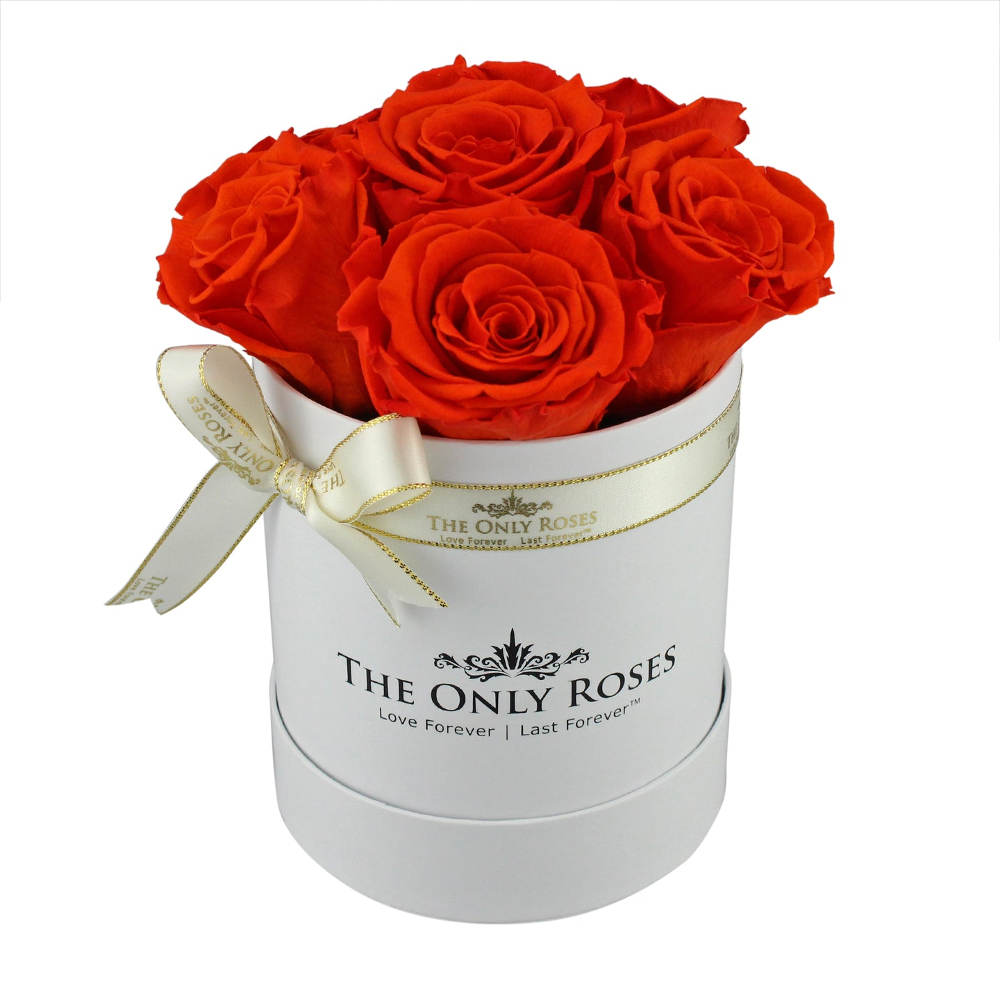 Bright Orange Preserved Roses | Small White Round Rose Hat Box
