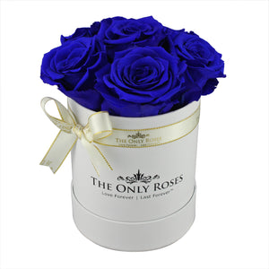 Royal Blue Preserved Roses | Small White Round Rose Hat Box