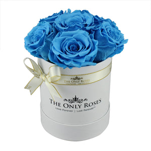 Blue Preserved Roses | Small White Round Rose Hat Box