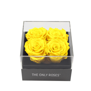 Yellow Preserved Roses | Small Square Classic Grey Box