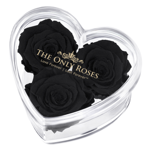 Black Preserved Rose | Acrylic Rose Heart Box