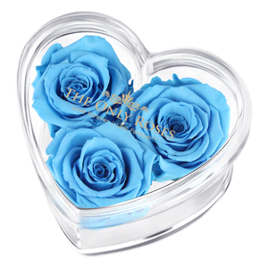 Blue Preserved Rose | Acrylic Rose Heart Box