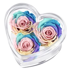 Candy Rainbow Preserved Rose | Acrylic Rose Heart Box
